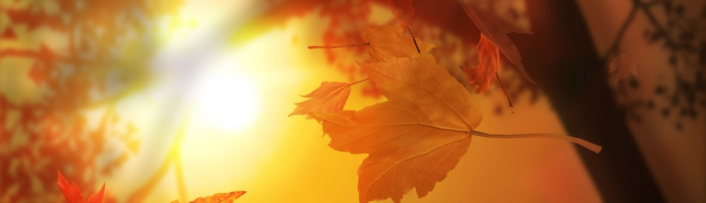 cropped-3d_autumn_leaves.jpg
