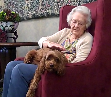 perro y adulto mayor