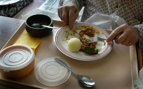 nhs-food_795495c
