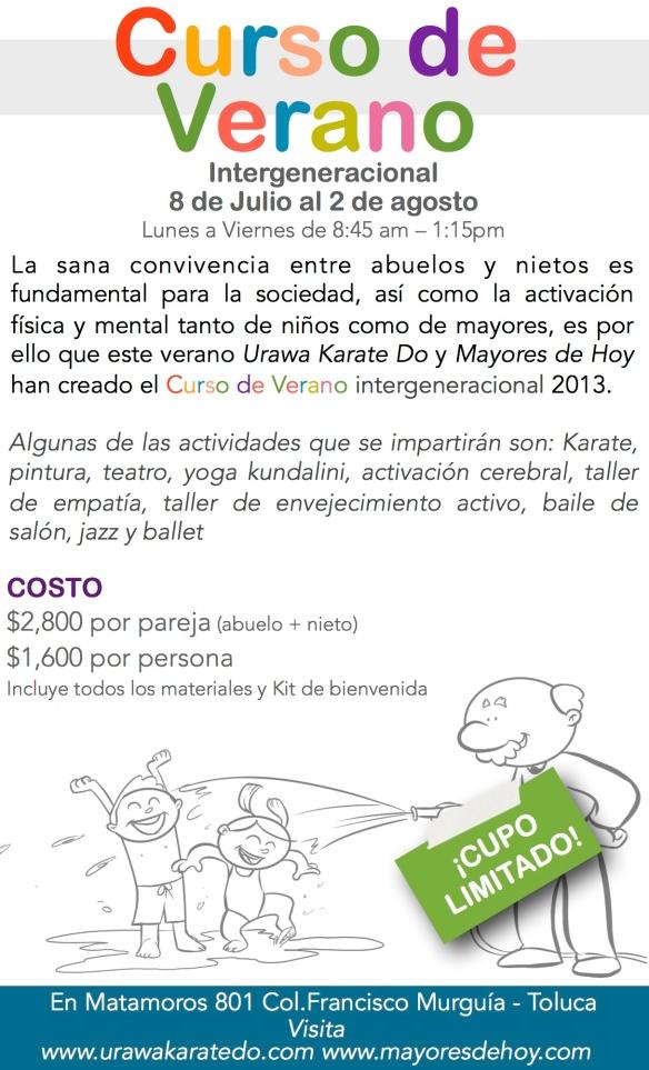Curso de verano en Toluca 2013