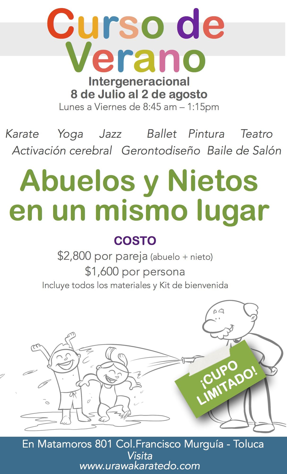 Curso de verano en Toluca