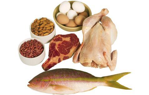 Proteína y adultos mayores