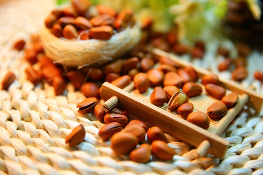 Pine Nuts Nut Protein