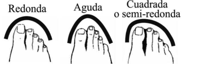 Escoger el zapato adecuado de acuerdo a la forma del pie