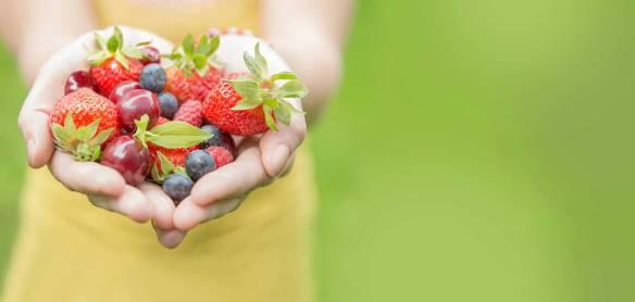 Diet_Nutrition-Hero-1260x600