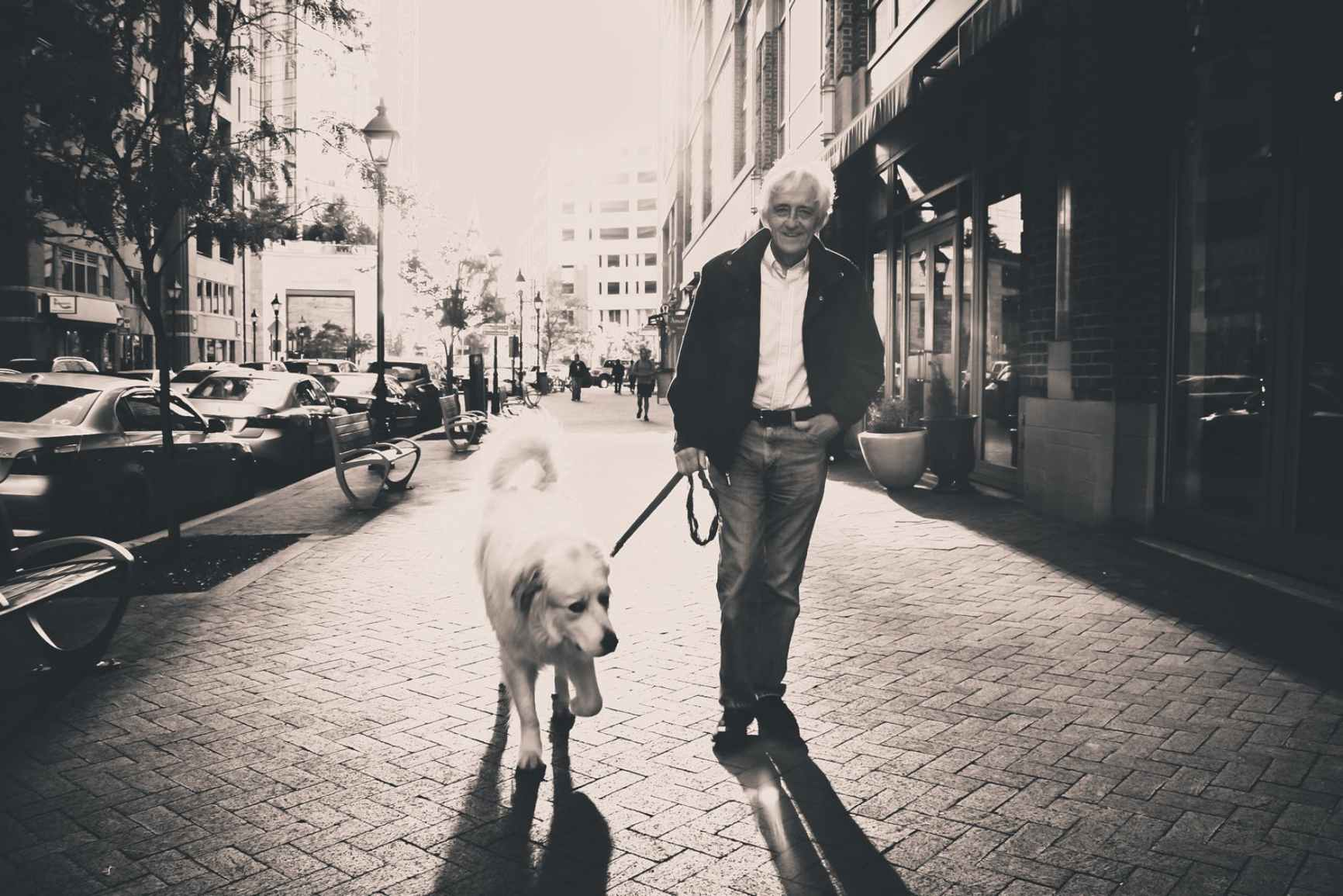 man dog streets walking